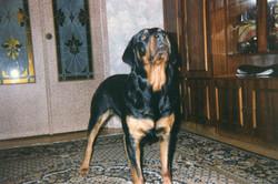 Юстина Анхара /1992 год/