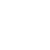 network (2).png