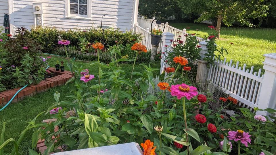 Marlor House Garden 2021 - 1.jpg