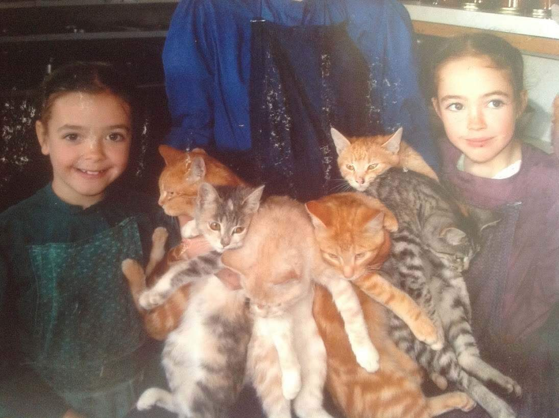 Emma and all her cats