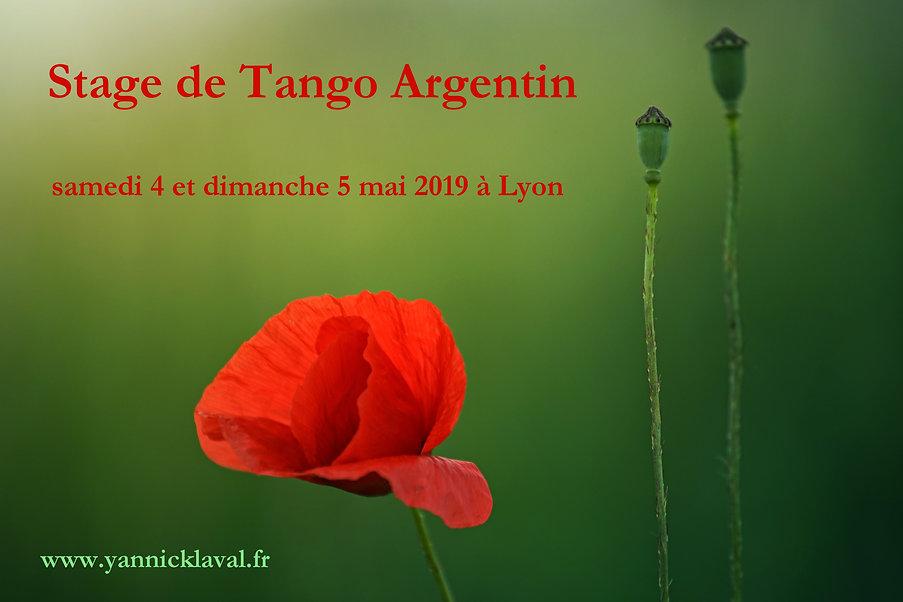TangoCoquelicots.jpg