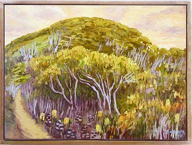 Honeysuckle hillside