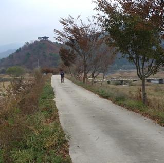 16.11.04 홍천 내촌천 트래킹
