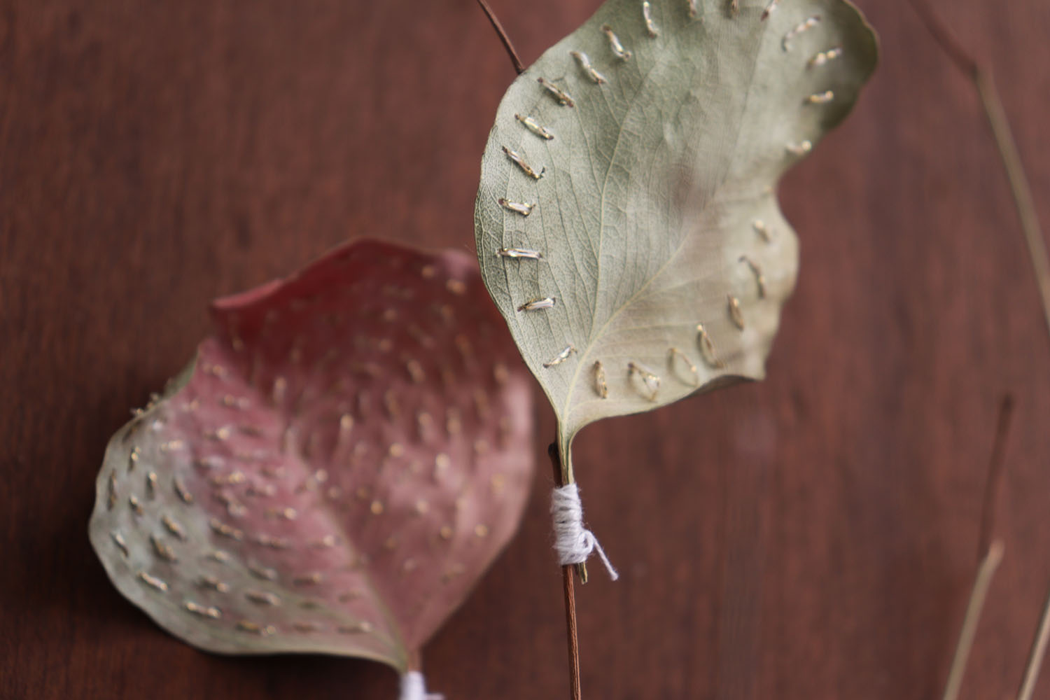 Needlework on dried leaves