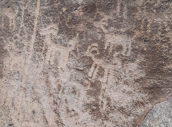 20190413_1336Petroglyphs in the Superstition Wilderness37.jpg