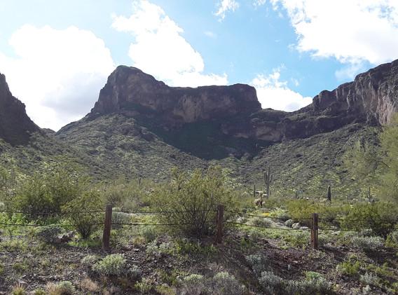 Picacho Peak