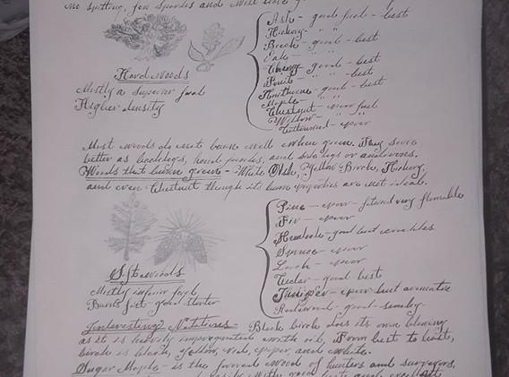 Diagram Botany.jpg