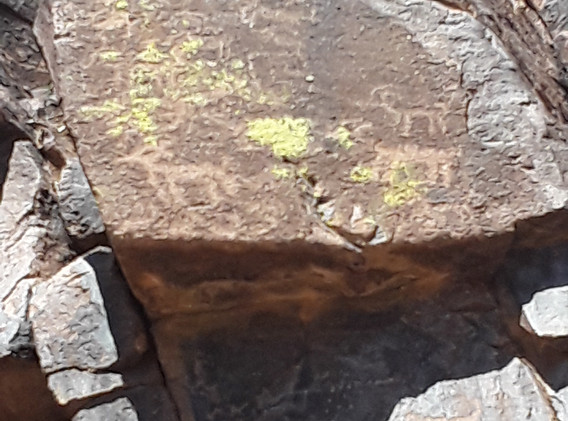Petroglyphs in the Superstition Wilderness