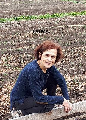 Palma_Caprioni_2