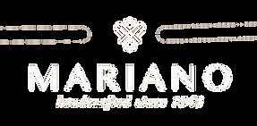 logo_MS_edited_edited.png