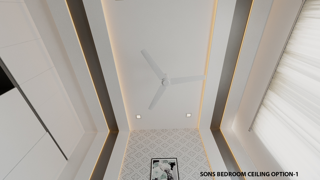 ceiling option-1