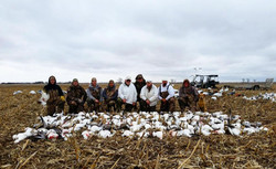 Spring Snow Goose Hunt