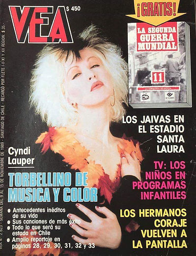 VEA Nov 1989 Chile.jpeg