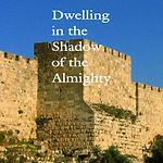 Dwellin in the shadow.jpg