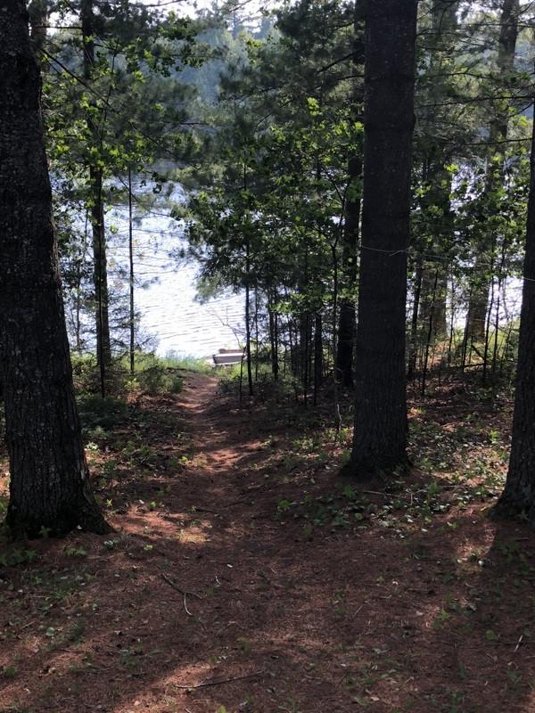Maple lake view