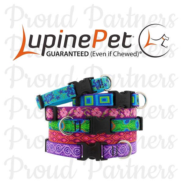 rebecca creek retrievers puppy dog collar guaranteed lupine pet