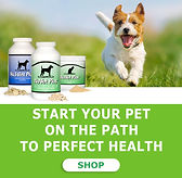 nuvet-pet-dogs-cats-supplemets-immune-su