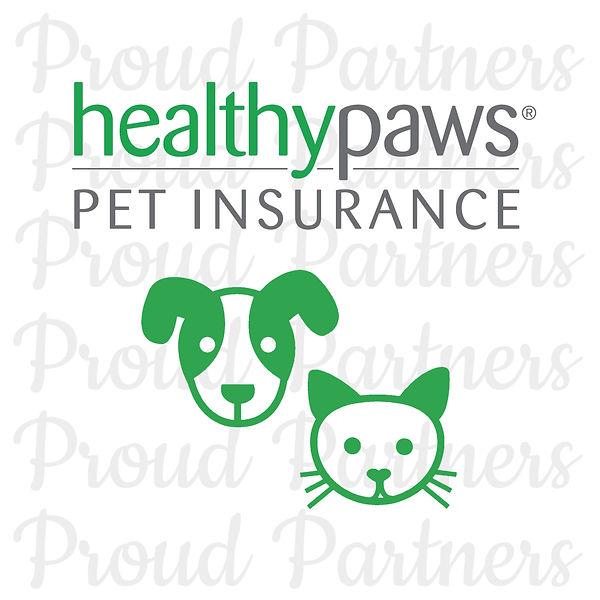 rebecca creek retrievers poodle doodle puppy dog insurance