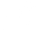 poodle clipart white.png