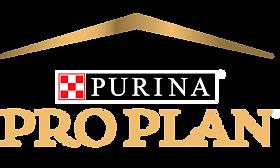 500x300 Pro Plan Logo_1.png