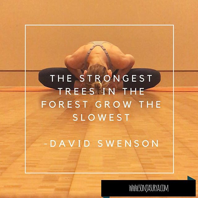 The strongest trees in the forest grow t