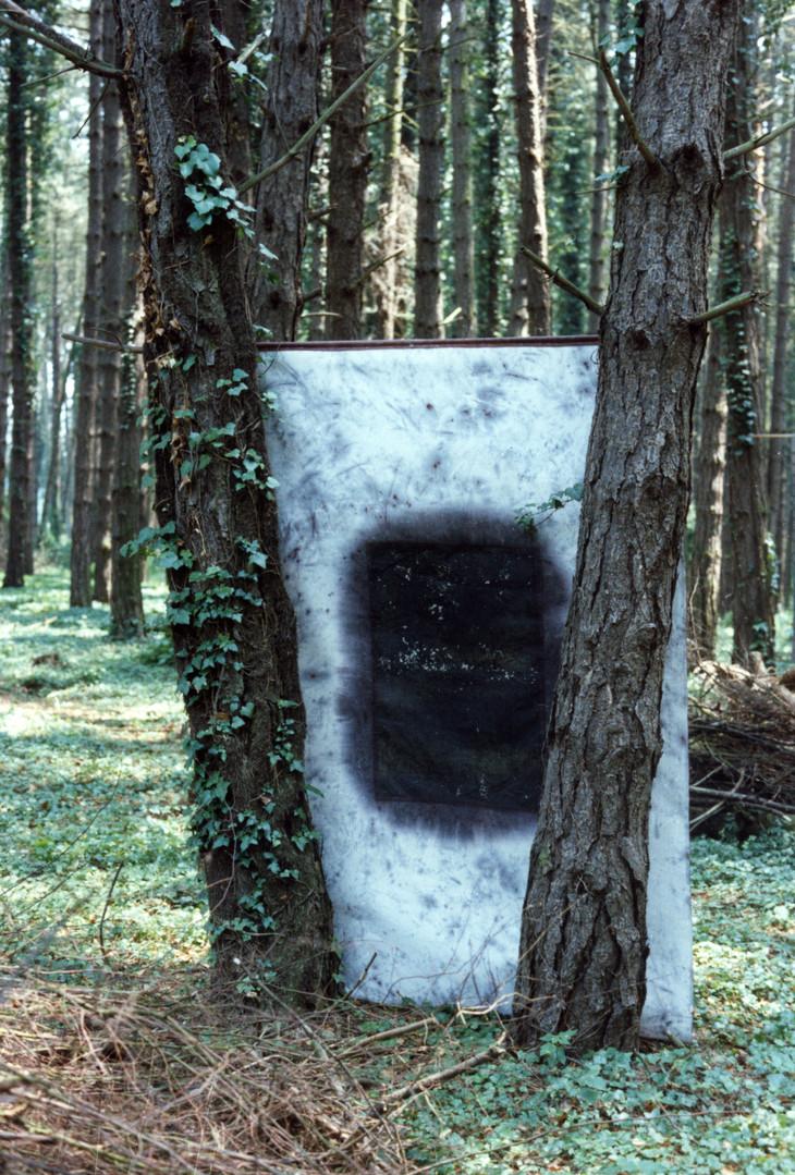 EXP_IND_1984_Forêt de Moyeuvre-Grande_1