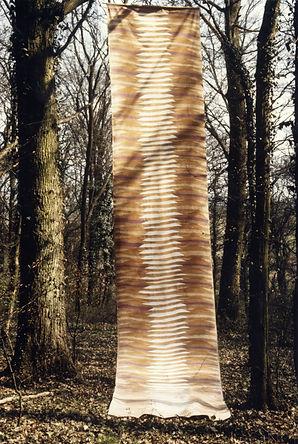 EXP_IND_1984_Forêt de Moyeuvre-Grande_4