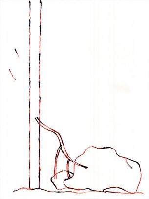 2010_Araucaria 001 (40).jpg