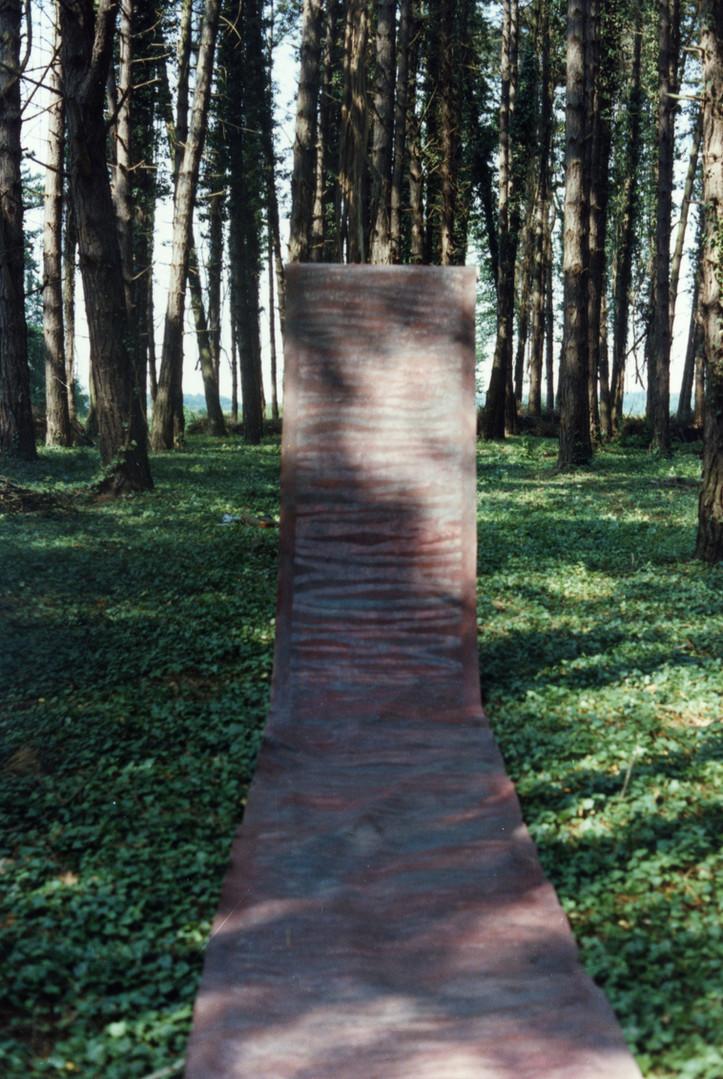 EXP_IND_1984_Forêt de Moyeuvre-Grande_8