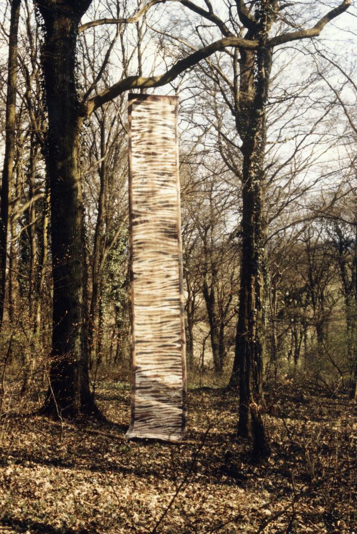 EXP_IND_1984_Forêt de Moyeuvre-Grande_6