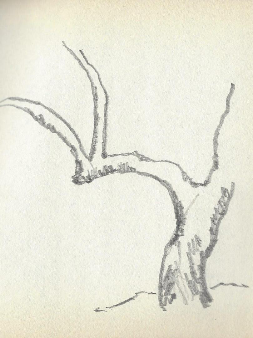 Scan122.jpg