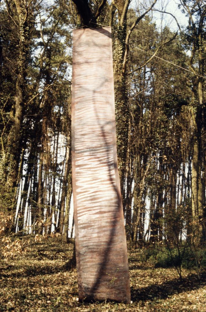 EXP_IND_1984_Forêt de Moyeuvre-Grande_5