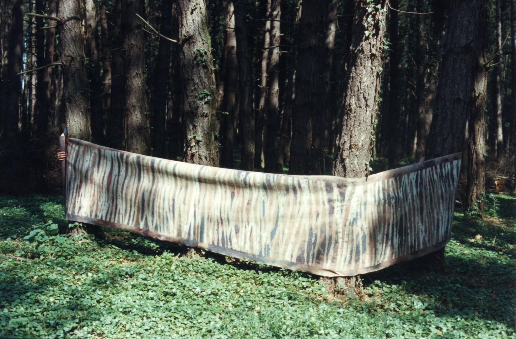 EXP_IND_1984_Forêt de Moyeuvre-Grande_7