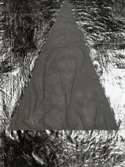 1983_Pw2col.priv.jpg