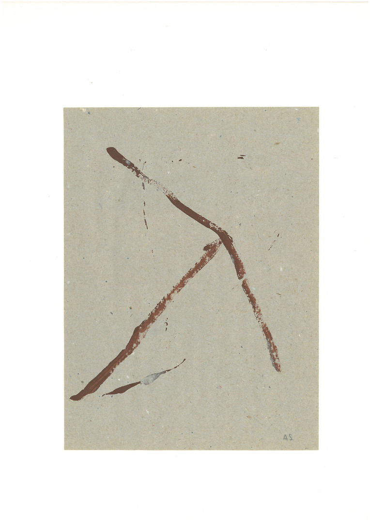 Dm14.jpg