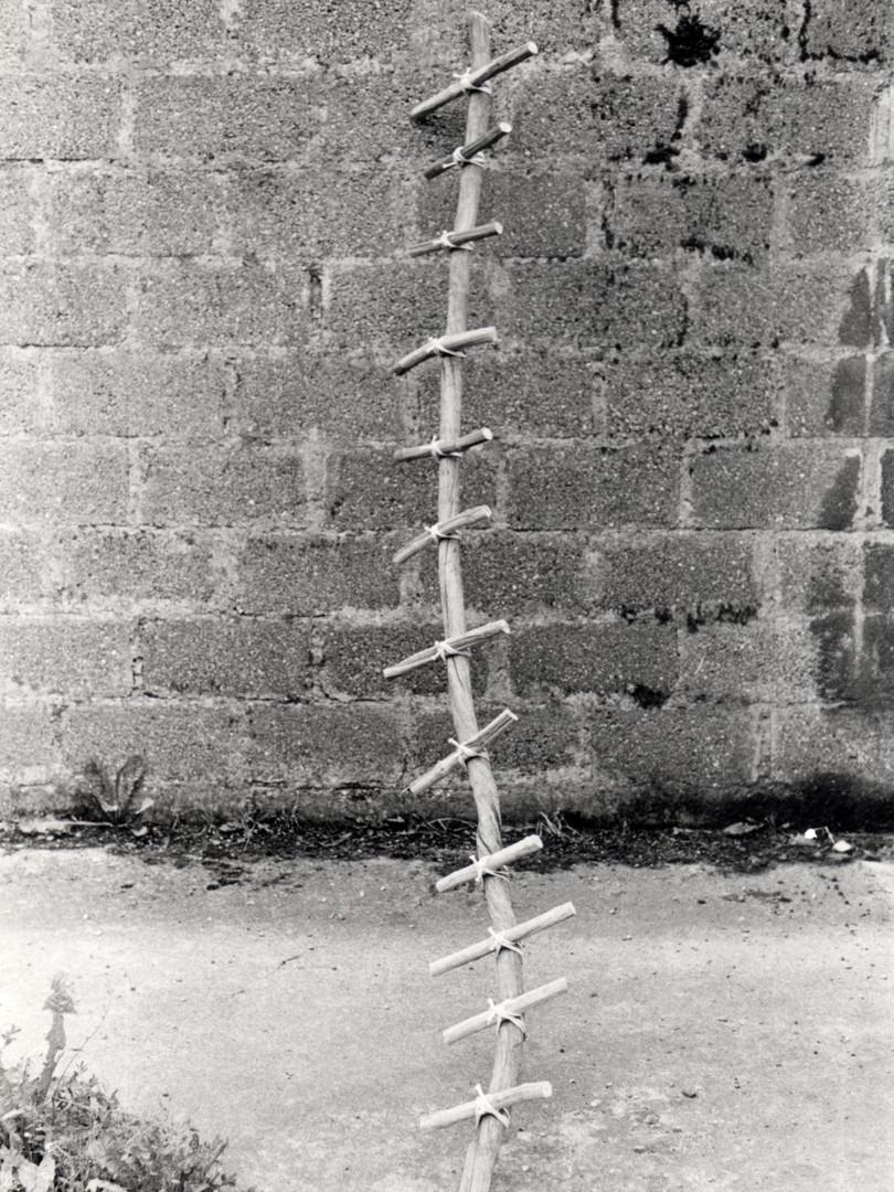 1980_SCUaa (6).jpg