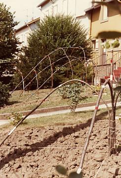 1980_SCUab (21).jpg