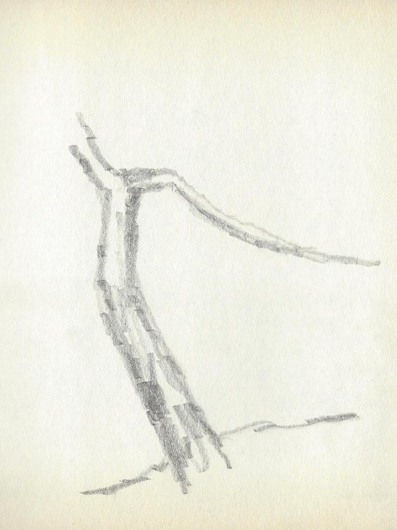 LCn1 (36).jpg