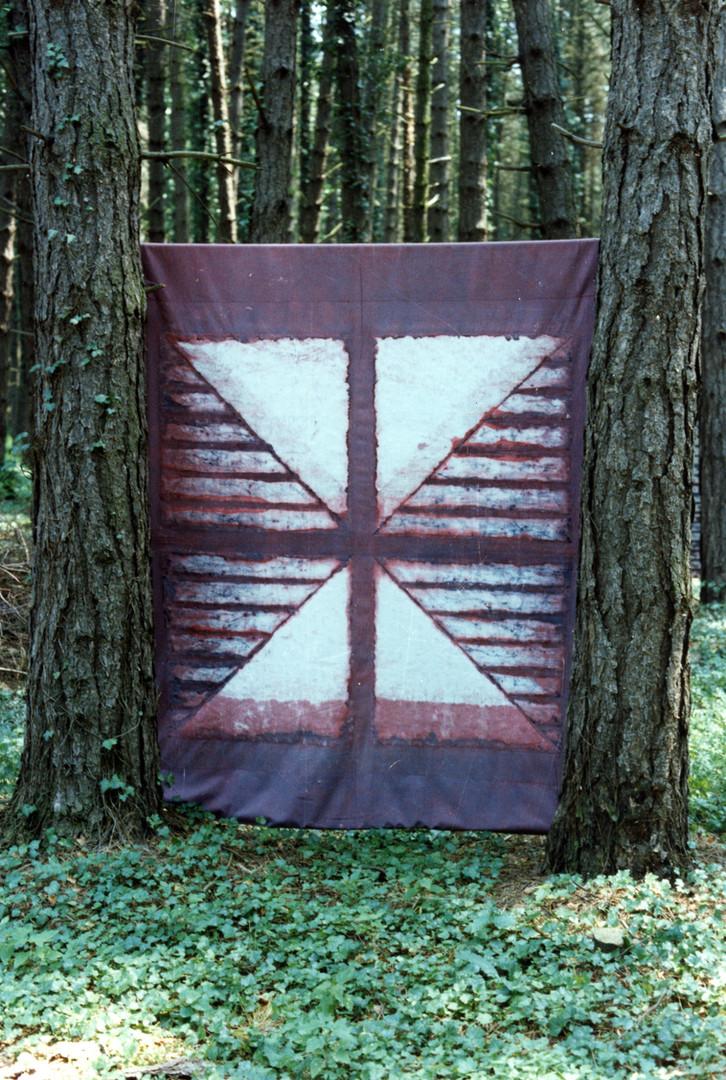 EXP_IND_1984_Forêt de Moyeuvre-Grande_9