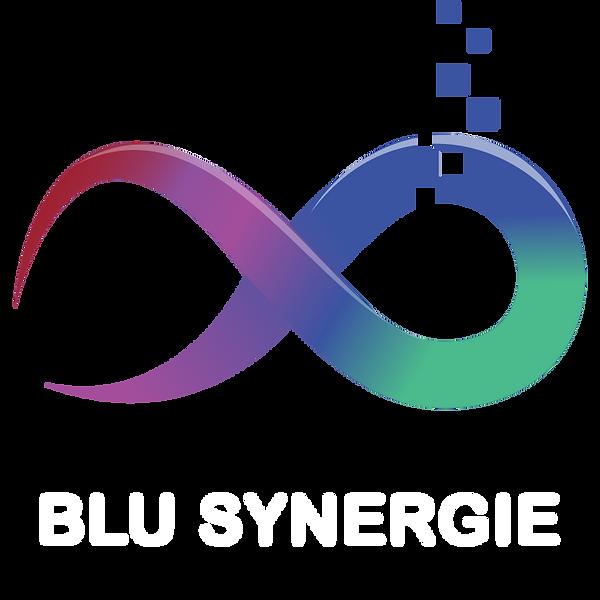 Logo_blusynergie_blanc.png
