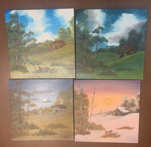 Cabin's Seasons