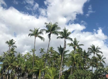 Aloha California – Aloha Hawai'i