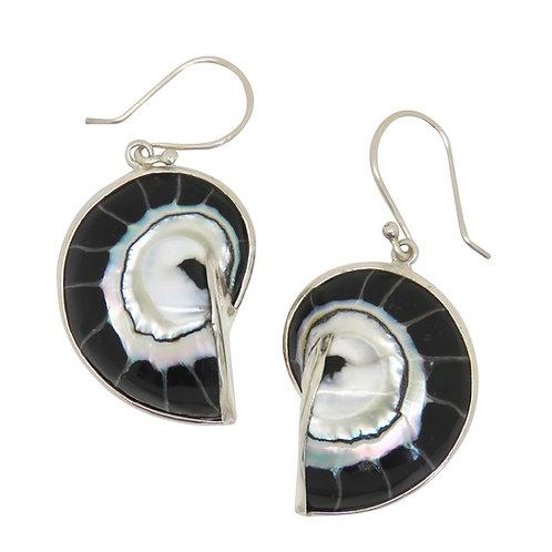 Nautilus Shell Black Earrings