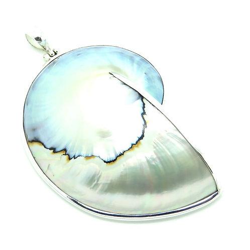 Nautilus Shell Grey Pendant - Large