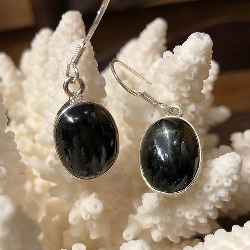 Onyx Oval Earrings