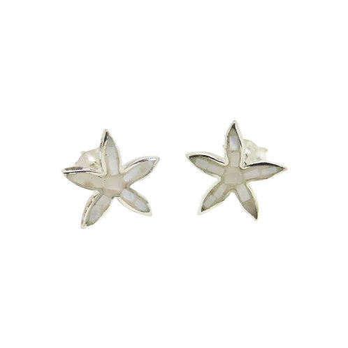 Mother of Pearl Starfish Studs
