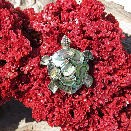 Abalone Turtle Pendant/Brooch