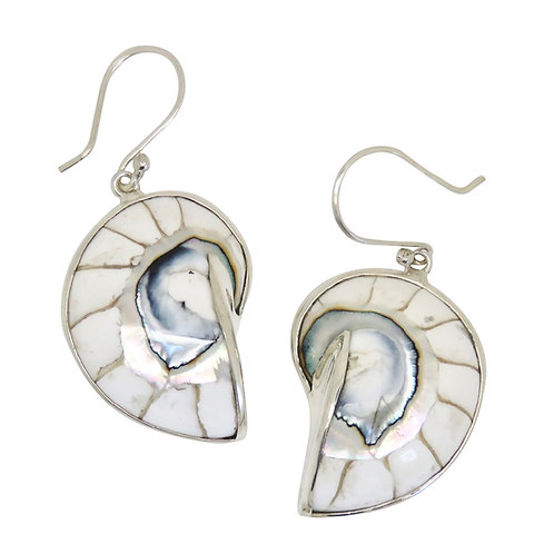 Nautilus Shell White Earrings