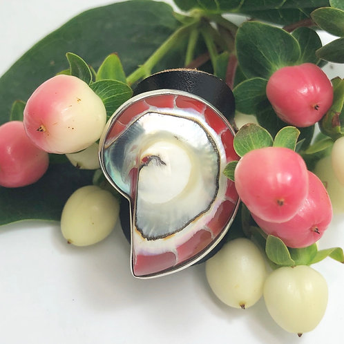 Red, Black, Clear Nautilus Shell Adjustable Silver Rings