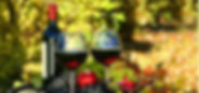 São_Roque_a_foto_do_site.JPG